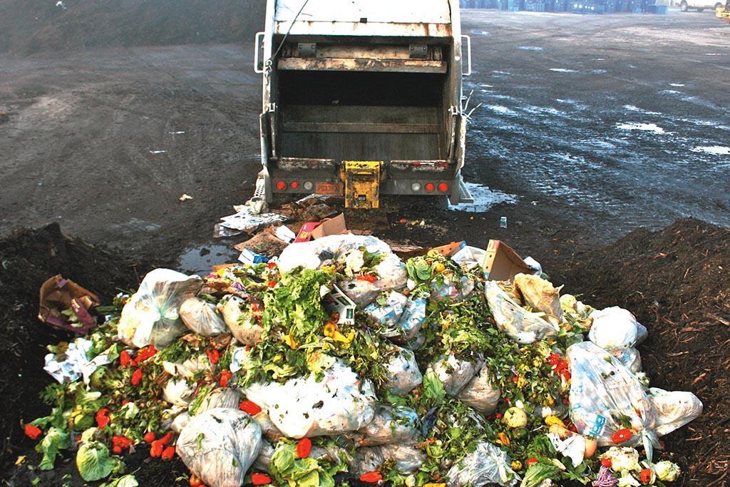 Захоронение на полигонах или мусорных свалках