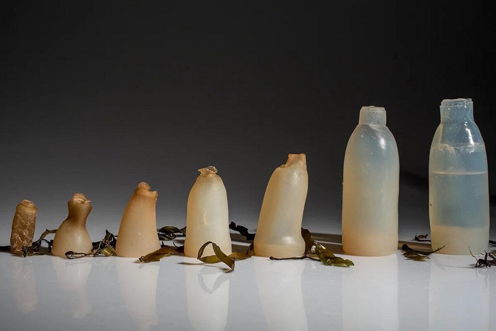 Биоразлагаемые бутылки