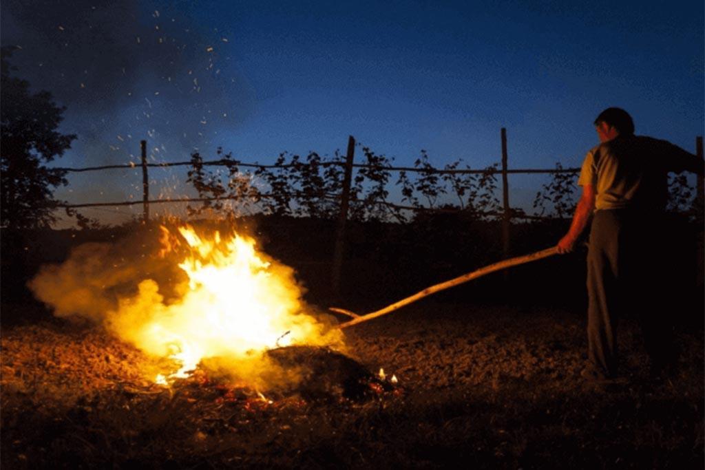 Как легально сжигать мусор на даче