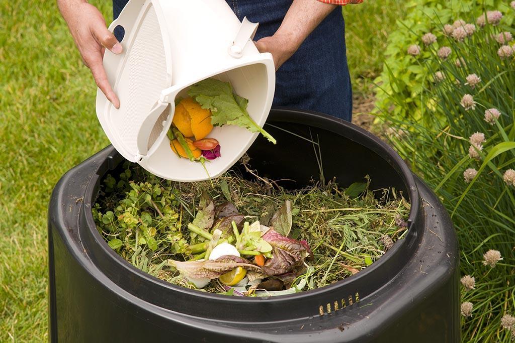 Какие отходы идут на компост