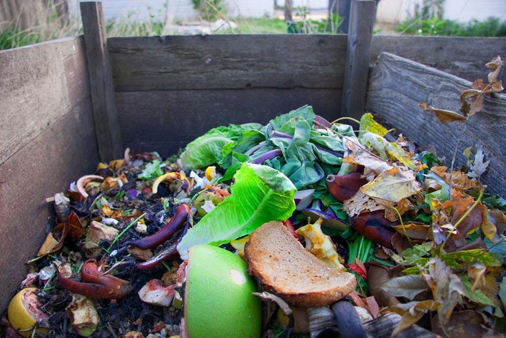 Компостирование отходов - что это такое