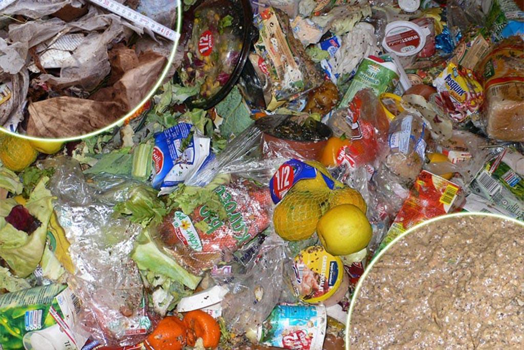 Насколько опасны пищевые отходы для человека и экологии