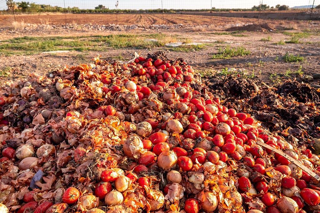 Нормативно-правовые акты об утилизации пищевых отходов