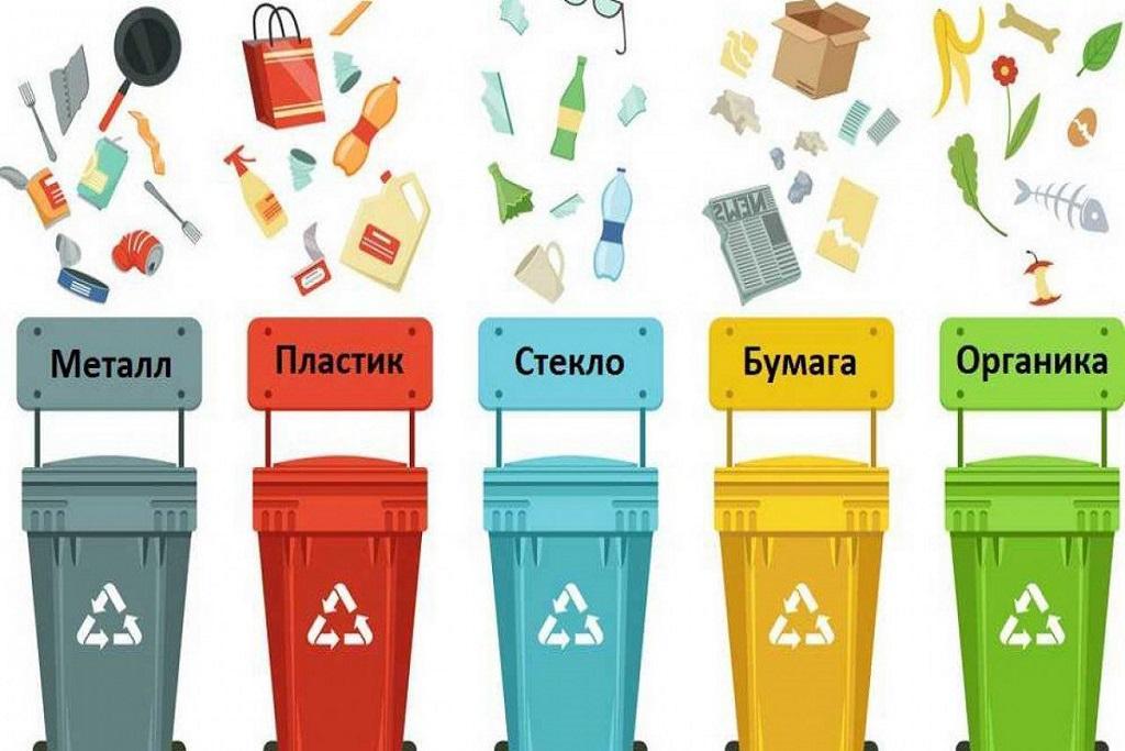 сбор и сортировка мусора