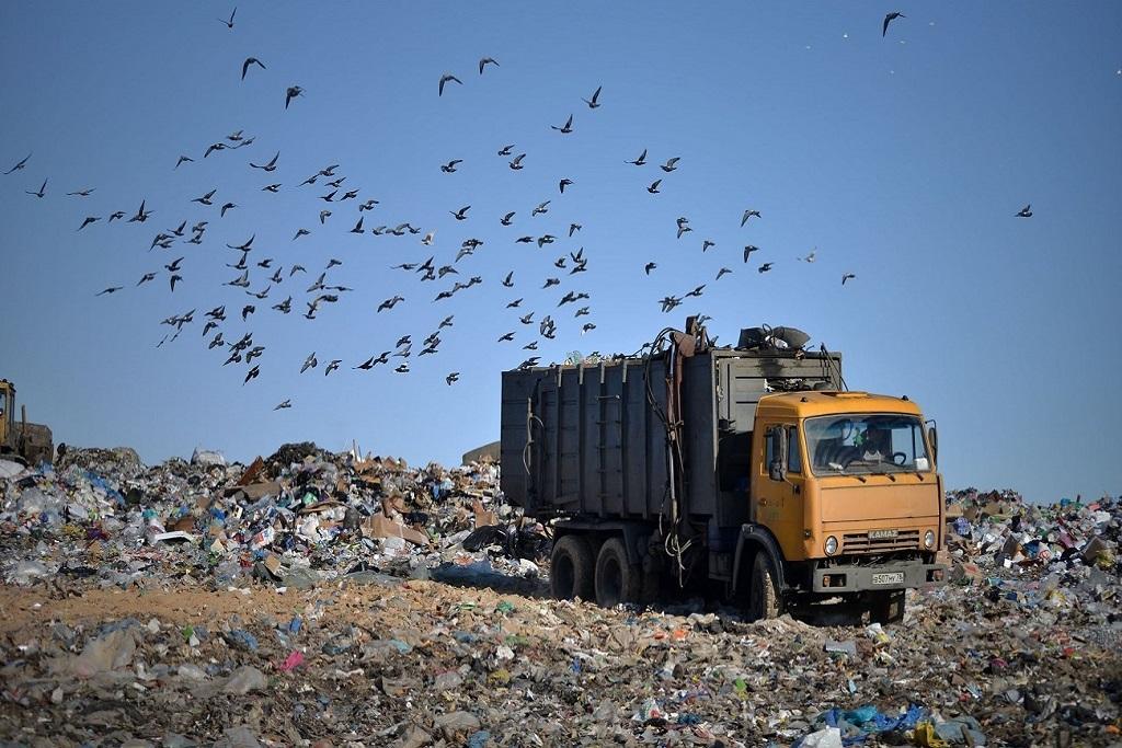 1 вариант: Вывоз мусора