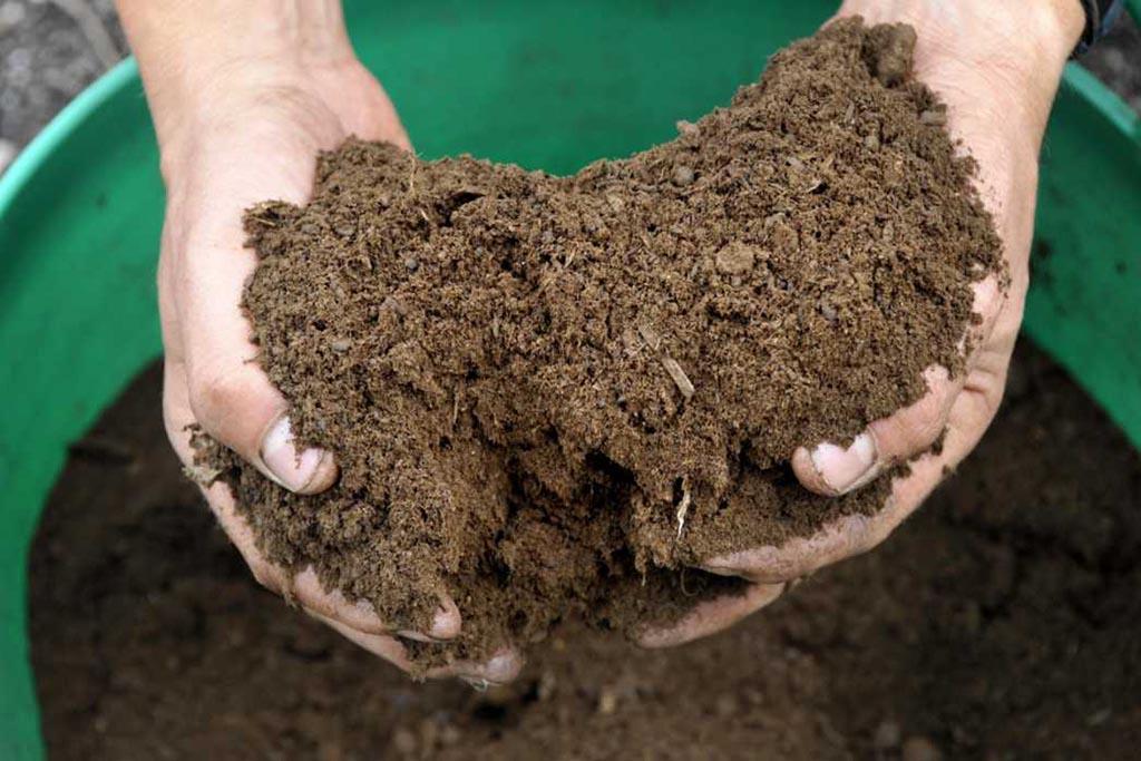 Плюсы утилизации и получения вторсырья после переработки пищевых отходов