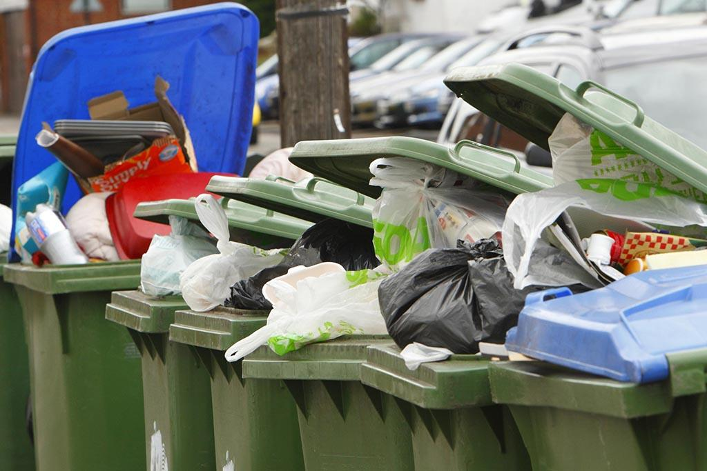 Проблемы с программой сортировки мусора