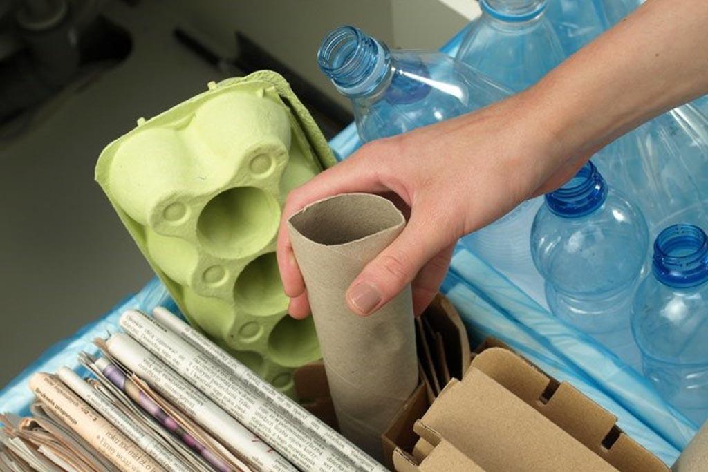 Сортировка мусора – зачем следует разделять отходы