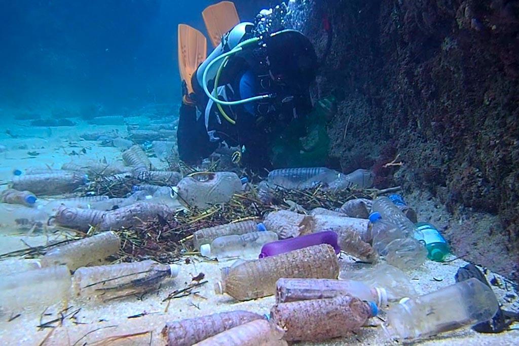 Темпы загрязнения планеты пластиком