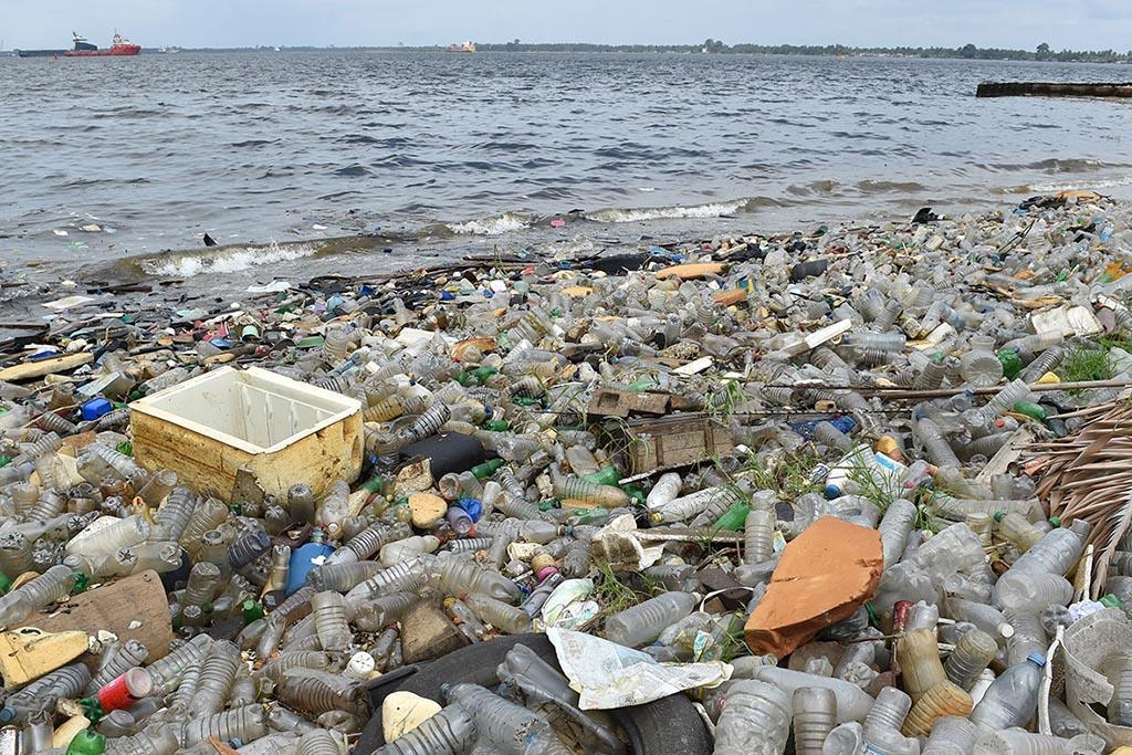 Засорение планеты пластиковыми отходами