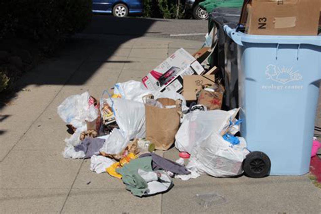Если региональный оператор не вывозит бытовой мусор, то куда жаловаться