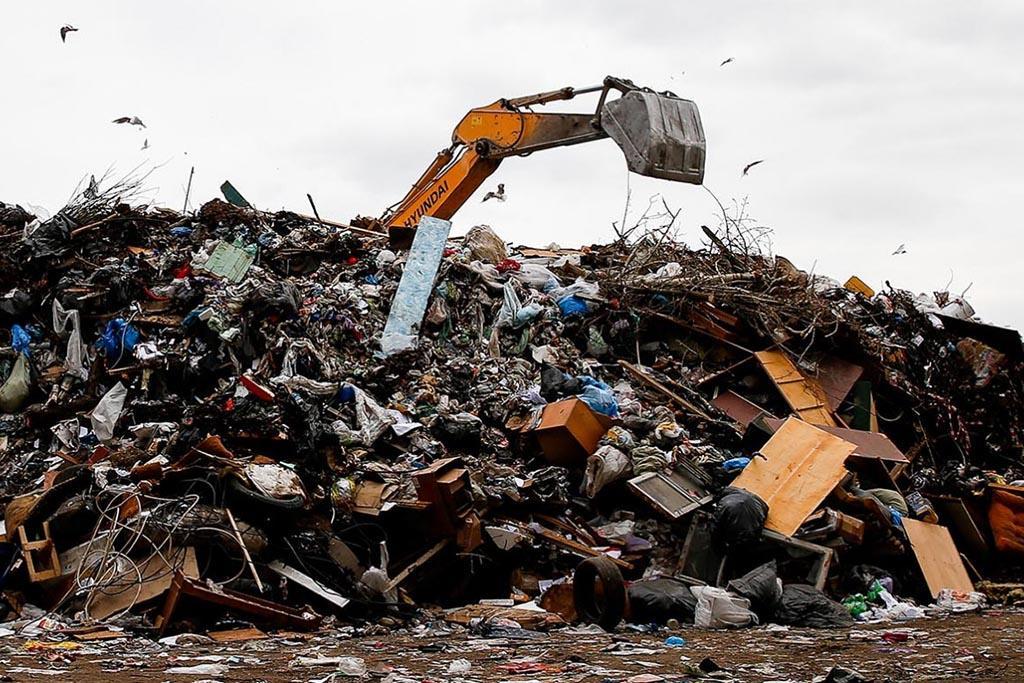 Факторы, определяющие сроки разложения мусора