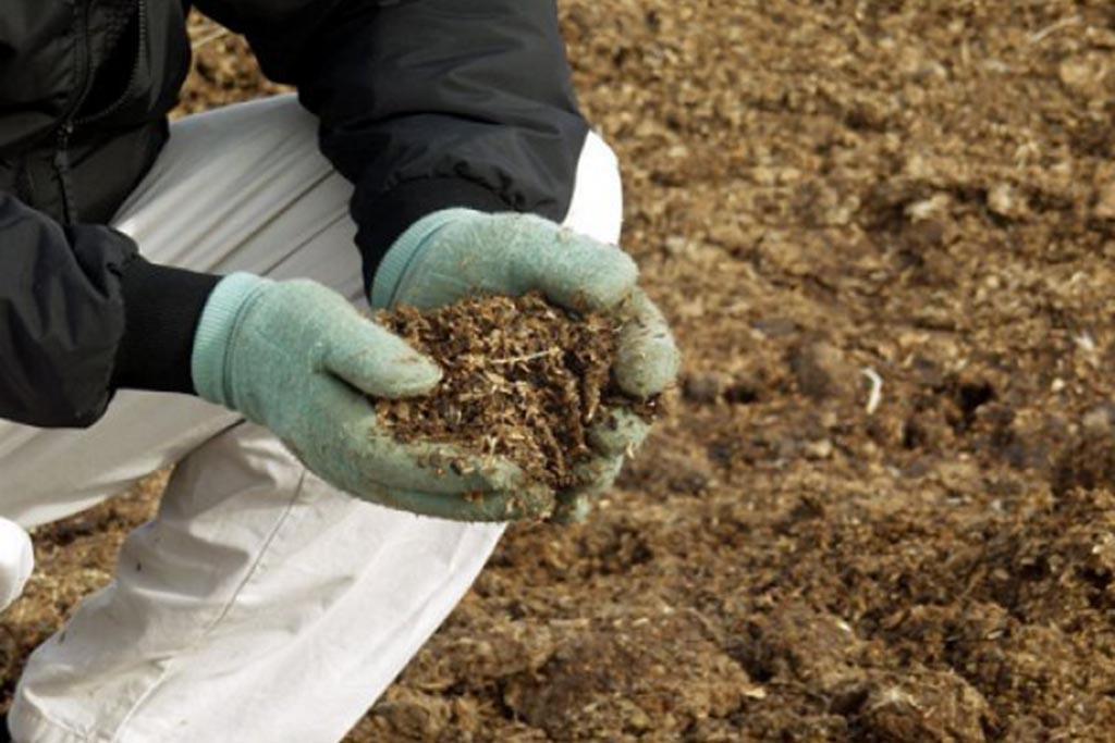 Проблемы утилизации отходов животноводства в России