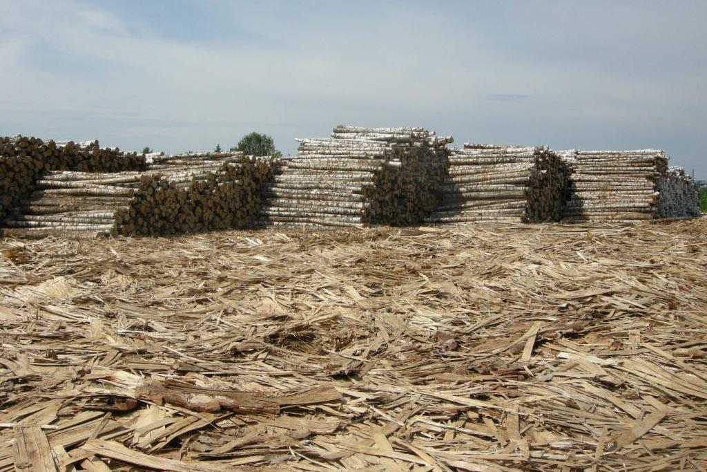 Ситуация с отходными материалами деревообработки в России