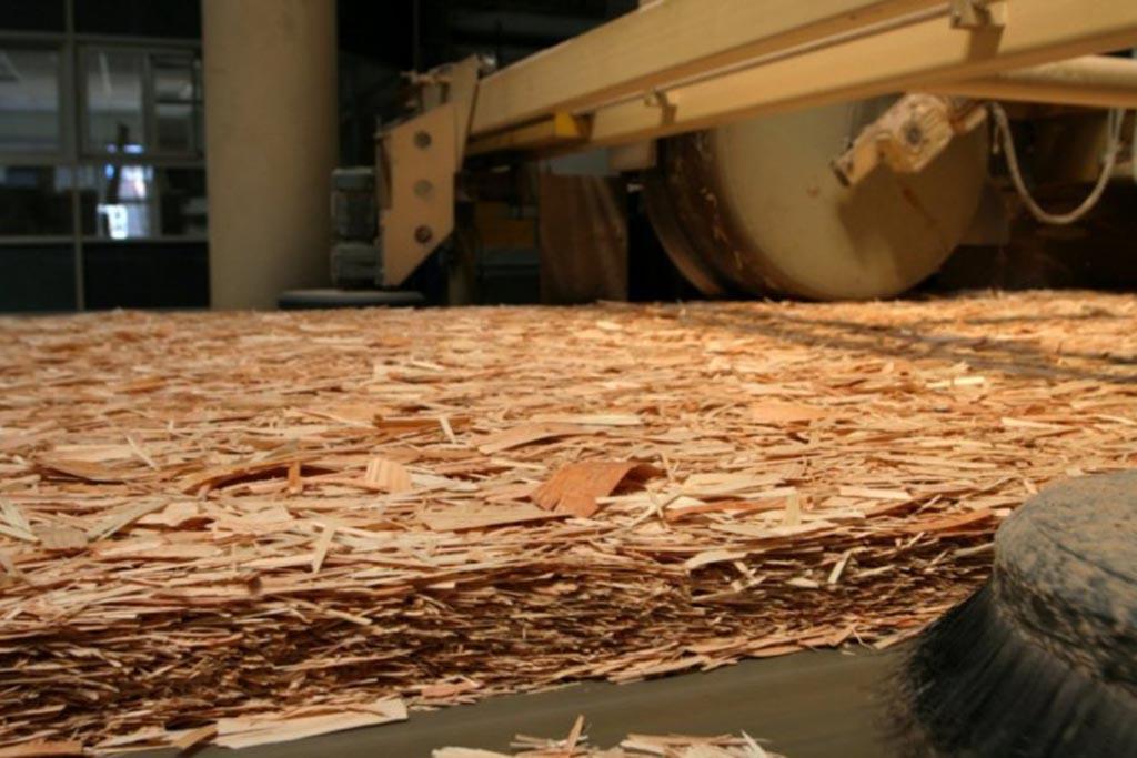 Суть Закона об обязательной утилизации древесных отходов, запланированного на 2022 год